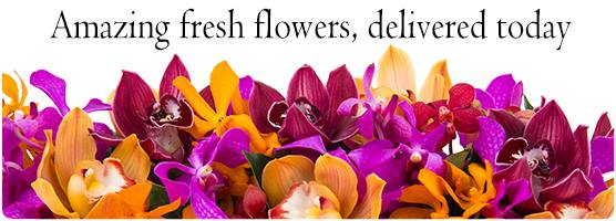Flowers on Talbragar - same day delivery